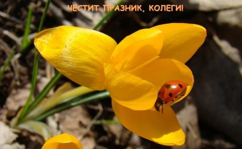 """Започва Седмицата на гората 01 – 07.04.2013г. """"Гората и ние"""""""